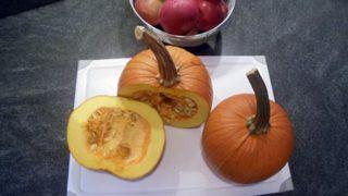 Apples & Pumpkin Puree Baby Food Recipe