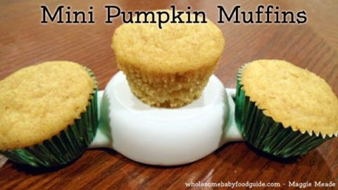 Mini Pumpkin Muffins – A Treat for Little Fingers