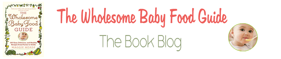 The Wholesome Baby Food Guide Blog