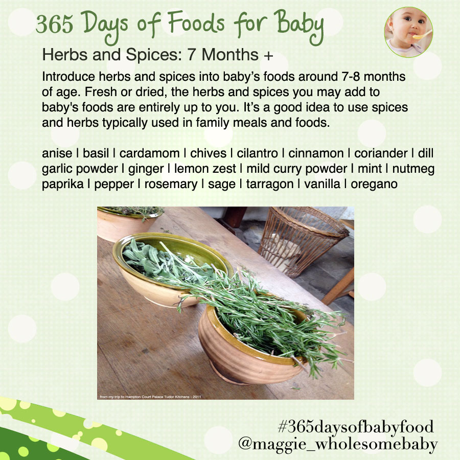 365babyfoodsherbsspices