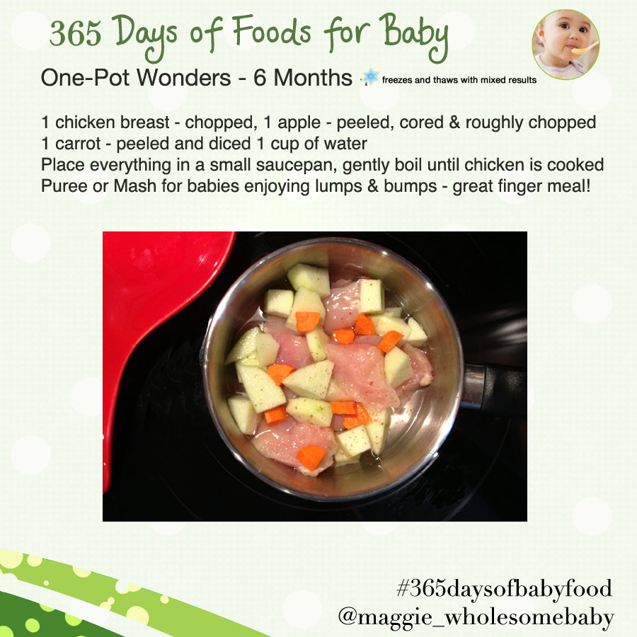 The wholesome baby food guide to making homemade baby food make day 25 one pot meals apples chicken and carrots 365 days of baby food forumfinder Images