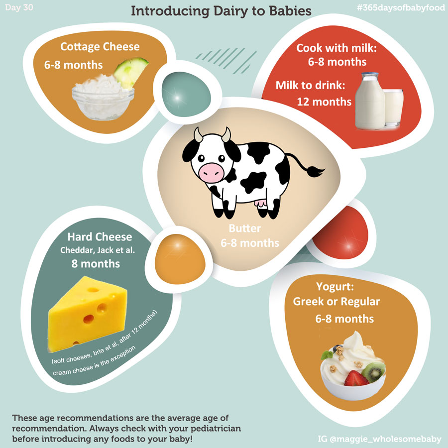 Day 30 – Dairy Infographic, When to introduce milk and ...