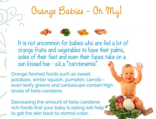 Day 31 – Orange Babies – 365 Days of Baby Food