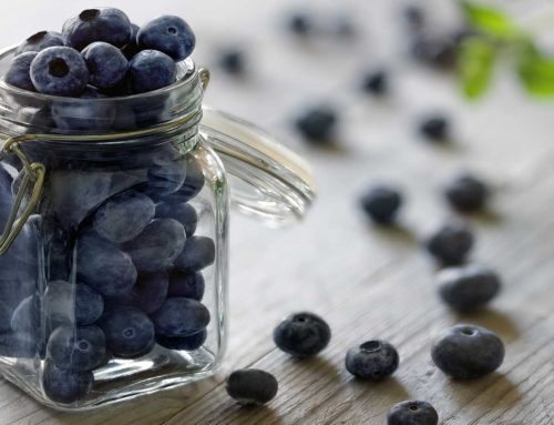 Blueberries for Baby Food Stage 1 and 6 Months of Age