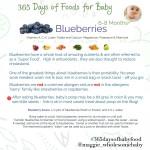 365babyfoodsBlueberries