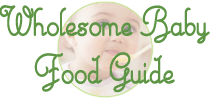 The Wholesome Baby Food Guide to Making Homemade Baby Food Logo