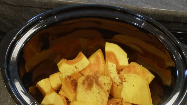 Pumpkin – A Slow Cooker Recipe – Baby Food & Beyond