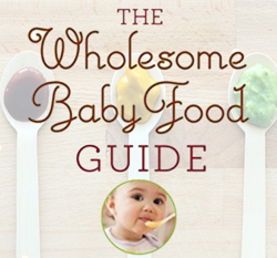 Wholesome Baby Food Guide Recipes Logo