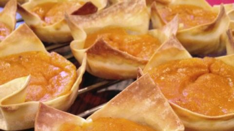 pumpkin pie wonton snacks for babies, toddlers and adults